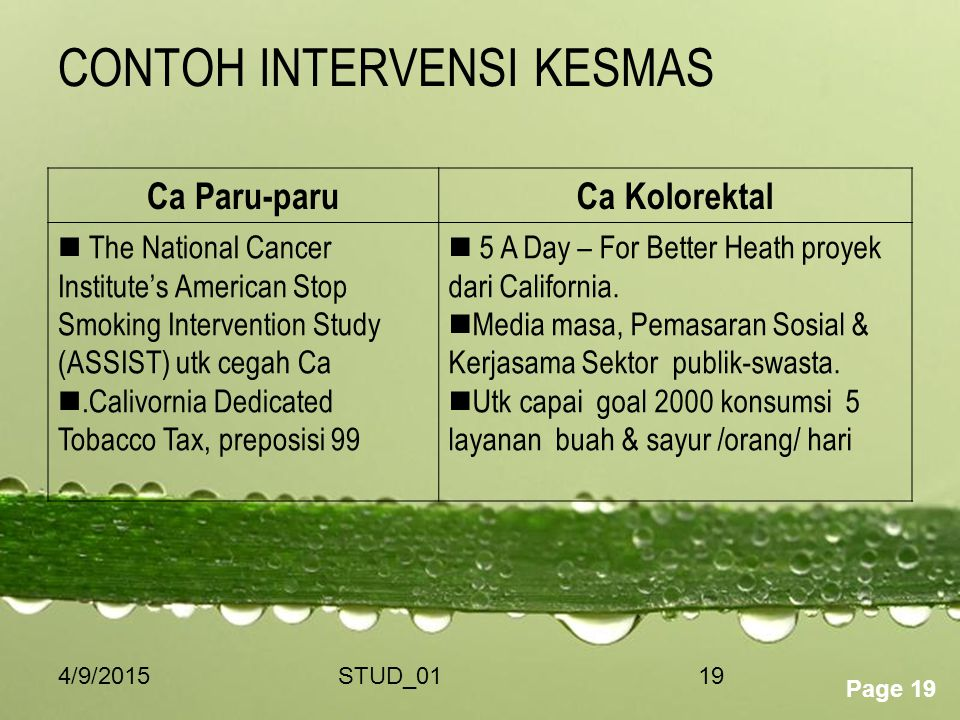 Powerpoint Templates Page 19 4/9/2015STUD_0119 CONTOH INTERVENSI KESMAS Ca Paru-paruCa Kolorektal The National Cancer Institute's American Stop Smokin
