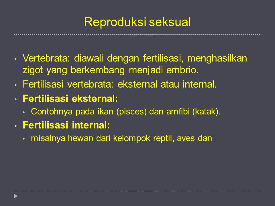 Reproduksi seksual Vertebrata: diawali dengan fertilisasi, menghasilkan zigot yang berkembang menjadi embrio. Fertilisasi vertebrata: eksternal atau i