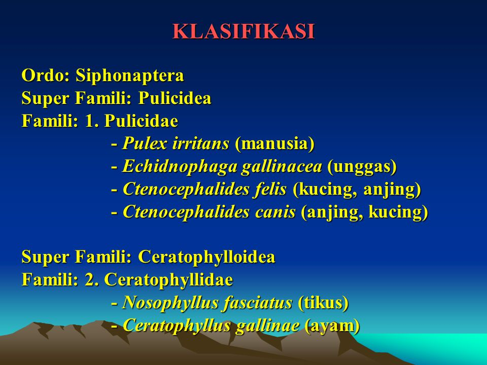 KLASIFIKASI Ordo: Siphonaptera Super Famili: Pulicidea Famili: 1. Pulicidae - Pulex irritans (manusia) - Pulex irritans (manusia) - Echidnophaga galli