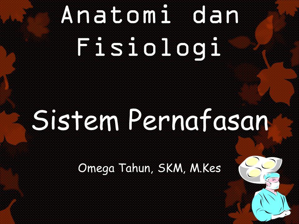 Anatomi dan Fisiologi Sistem Pernafasan Omega Tahun, SKM, M.Kes