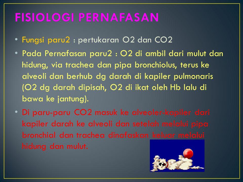 Fungsi paru2 : pertukaran O2 dan CO2 Pada Pernafasan paru2 : O2 di ambil dari mulut dan hidung, via trachea dan pipa bronchiolus, terus ke alveoli dan