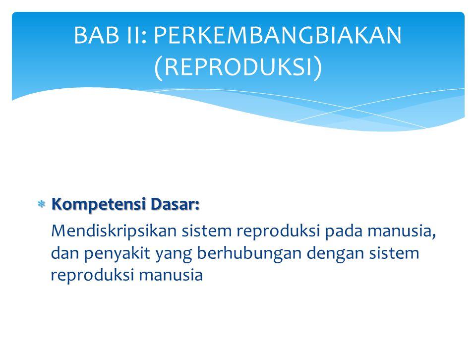  Kompetensi Dasar: Mendiskripsikan sistem reproduksi pada manusia, dan penyakit yang berhubungan dengan sistem reproduksi manusia BAB II: PERKEMBANGB