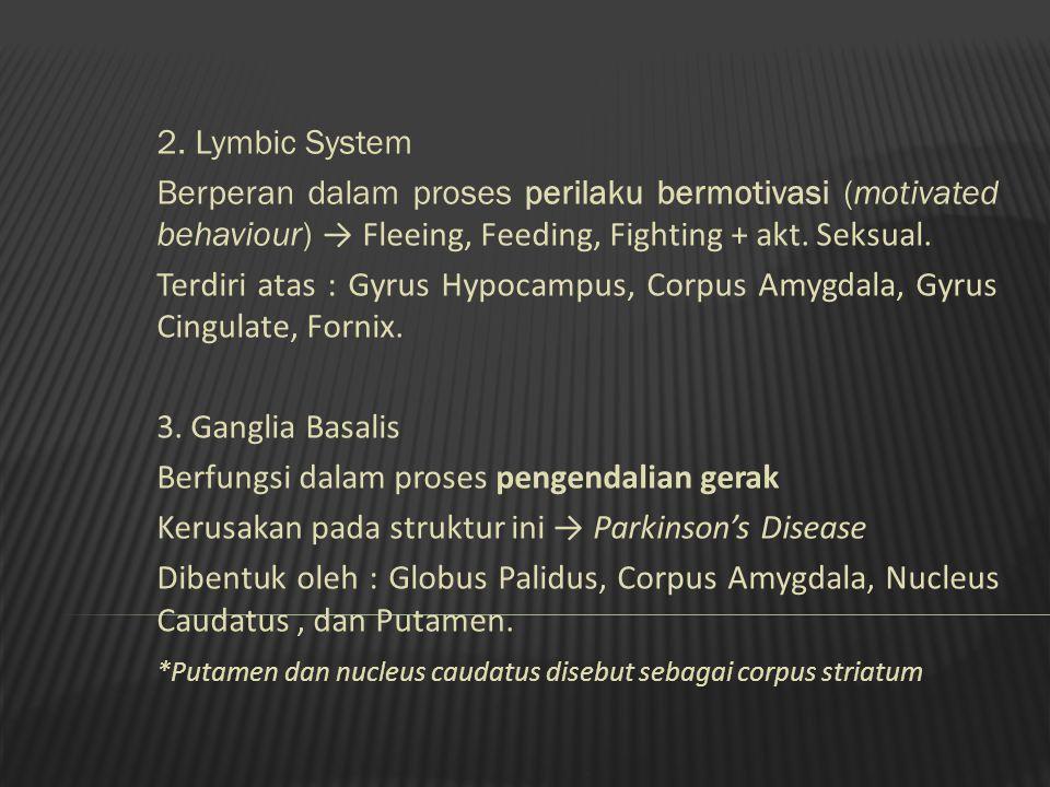 2. Lymbic System Berperan dalam proses perilaku bermotivasi (motivated behaviour) → Fleeing, Feeding, Fighting + akt. Seksual. Terdiri atas : Gyrus Hy