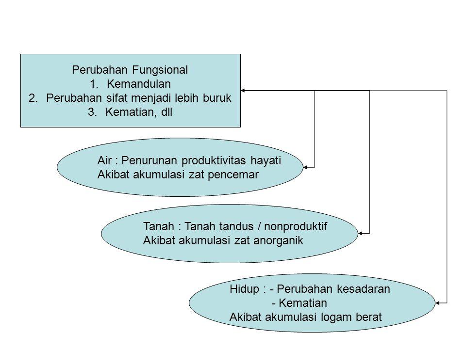 Perubahan Fungsional 1.Kemandulan 2.Perubahan sifat menjadi lebih buruk 3.Kematian, dll Air : Penurunan produktivitas hayati Akibat akumulasi zat penc