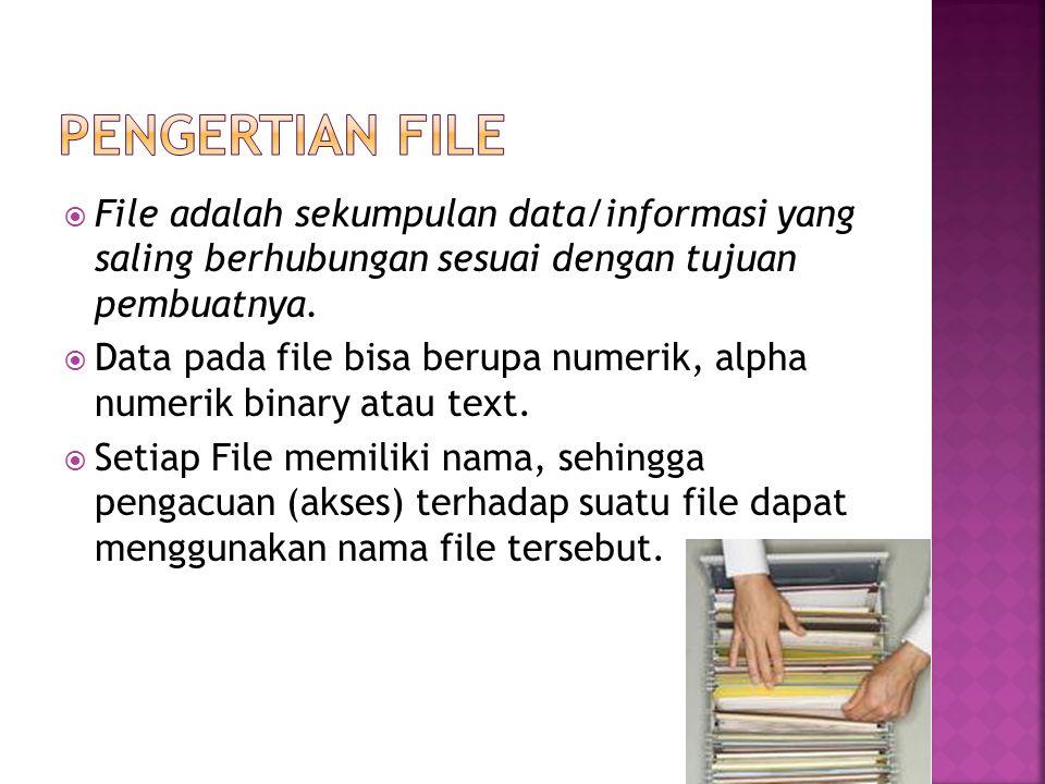  File adalah sekumpulan data/informasi yang saling berhubungan sesuai dengan tujuan pembuatnya.  Data pada file bisa berupa numerik, alpha numerik b