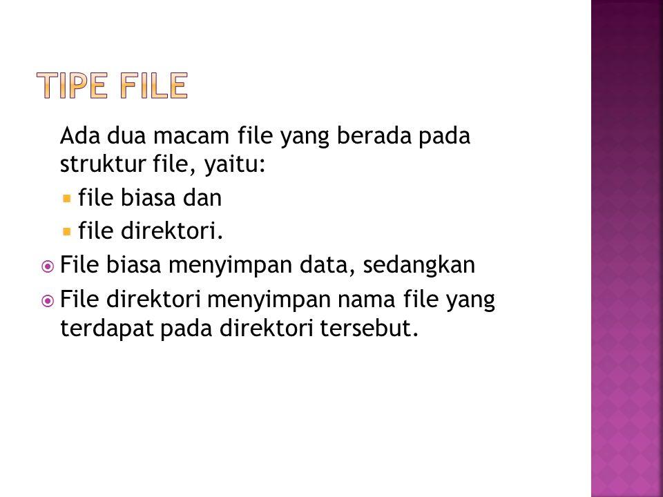 Ada dua macam file yang berada pada struktur file, yaitu:  file biasa dan  file direktori.  File biasa menyimpan data, sedangkan  File direktori m