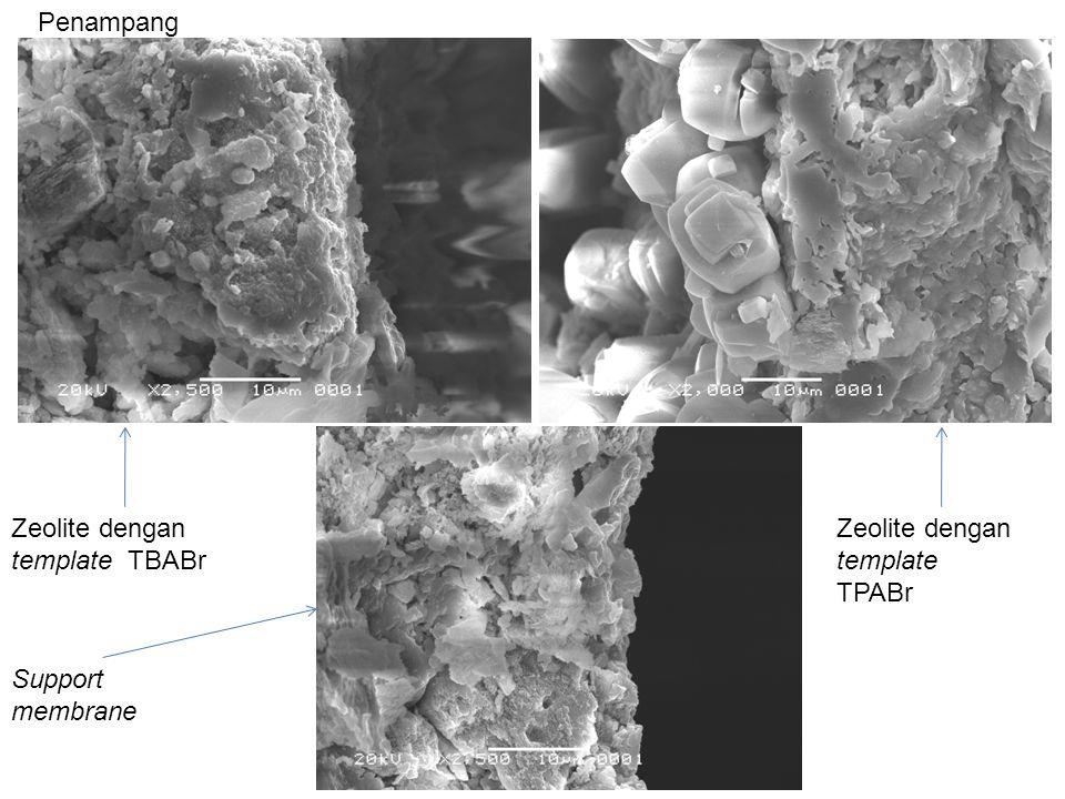 Penampang Zeolite dengan template TBABr Zeolite dengan template TPABr Support membrane