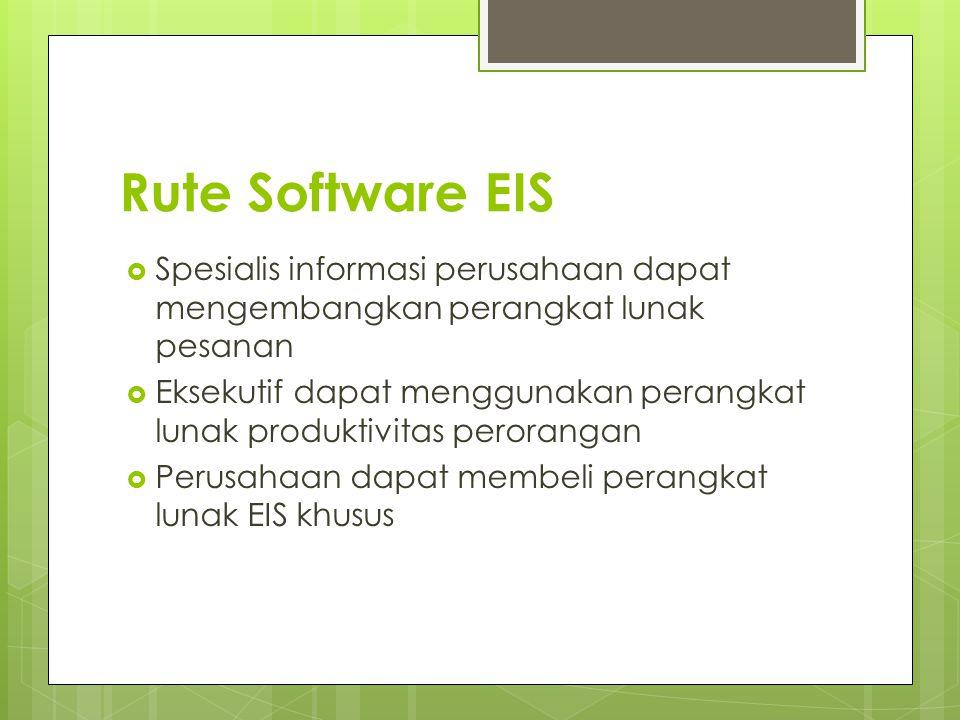 Rute Software EIS  Spesialis informasi perusahaan dapat mengembangkan perangkat lunak pesanan  Eksekutif dapat menggunakan perangkat lunak produktiv