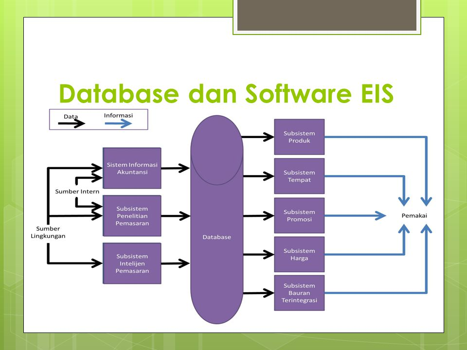 Database dan Software EIS