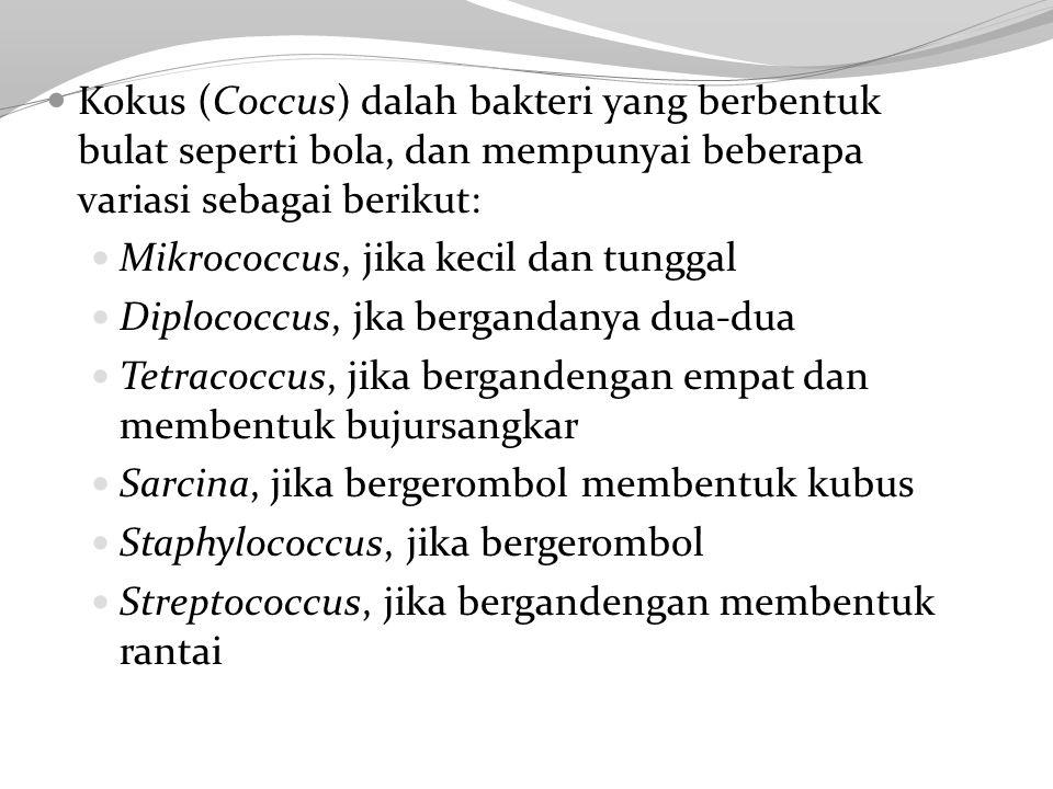 Kokus (Coccus) dalah bakteri yang berbentuk bulat seperti bola, dan mempunyai beberapa variasi sebagai berikut: Mikrococcus, jika kecil dan tunggal Diplococcus, jka bergandanya dua-dua Tetracoccus, jika bergandengan empat dan membentuk bujursangkar Sarcina, jika bergerombol membentuk kubus Staphylococcus, jika bergerombol Streptococcus, jika bergandengan membentuk rantai