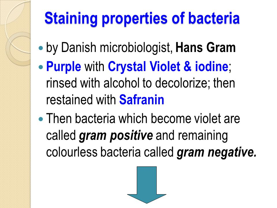 Staining properties of bacteria by Danish microbiologist, Hans Gram Purple with Crystal Violet & iodine ; rinsed with alcohol to decolorize; then restained with Safranin Then bacteria which become violet are called gram positive and remaining colourless bacteria called gram negative.