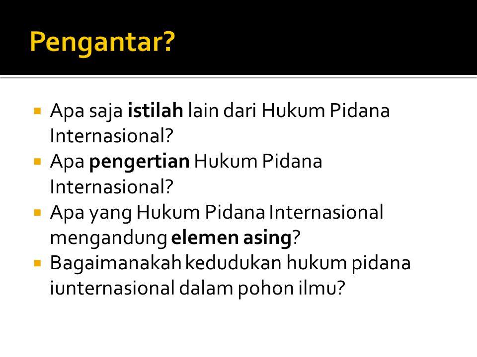  Apa saja istilah lain dari Hukum Pidana Internasional?  Apa pengertian Hukum Pidana Internasional?  Apa yang Hukum Pidana Internasional mengandung