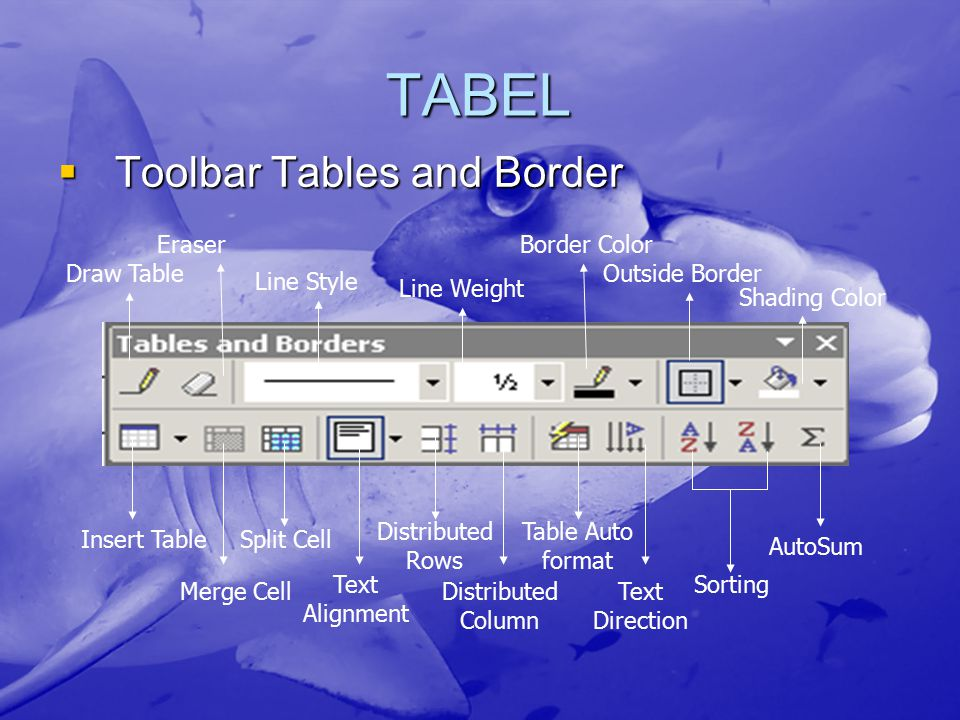 TABEL  Toolbar Tables and Border Draw Table Eraser Line Style Line Weight Border Color Outside Border Shading Color Insert Table Merge Cell Split Cel
