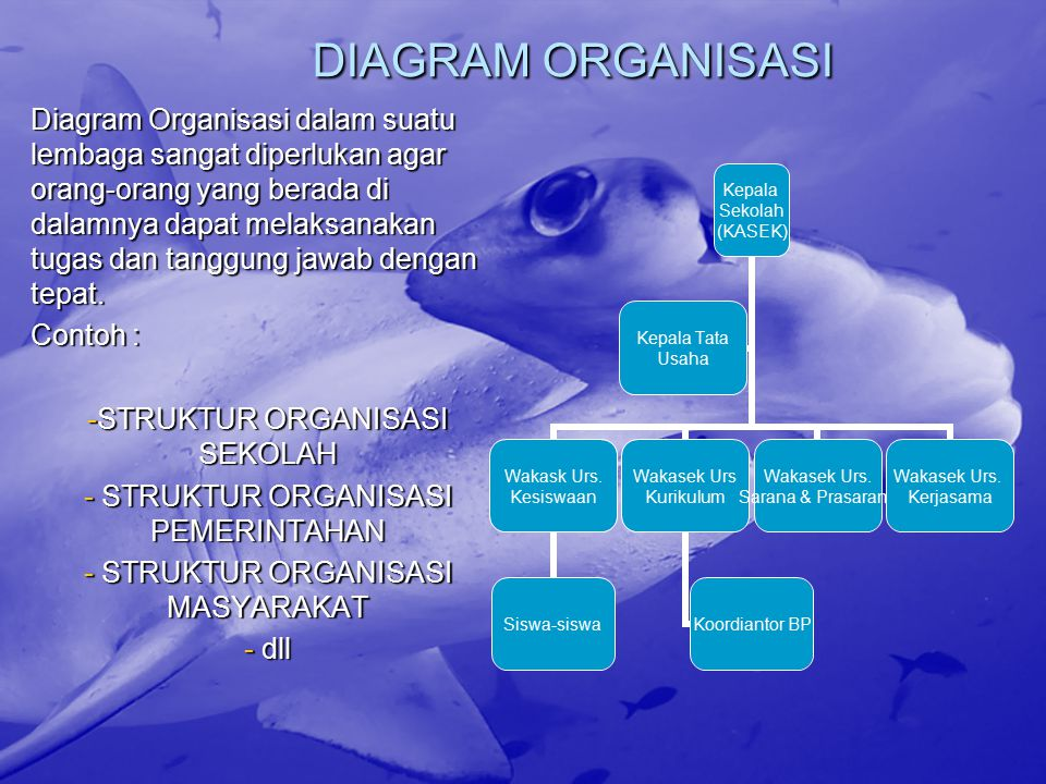 DIAGRAM ORGANISASI Diagram Organisasi dalam suatu lembaga sangat diperlukan agar orang-orang yang berada di dalamnya dapat melaksanakan tugas dan tang