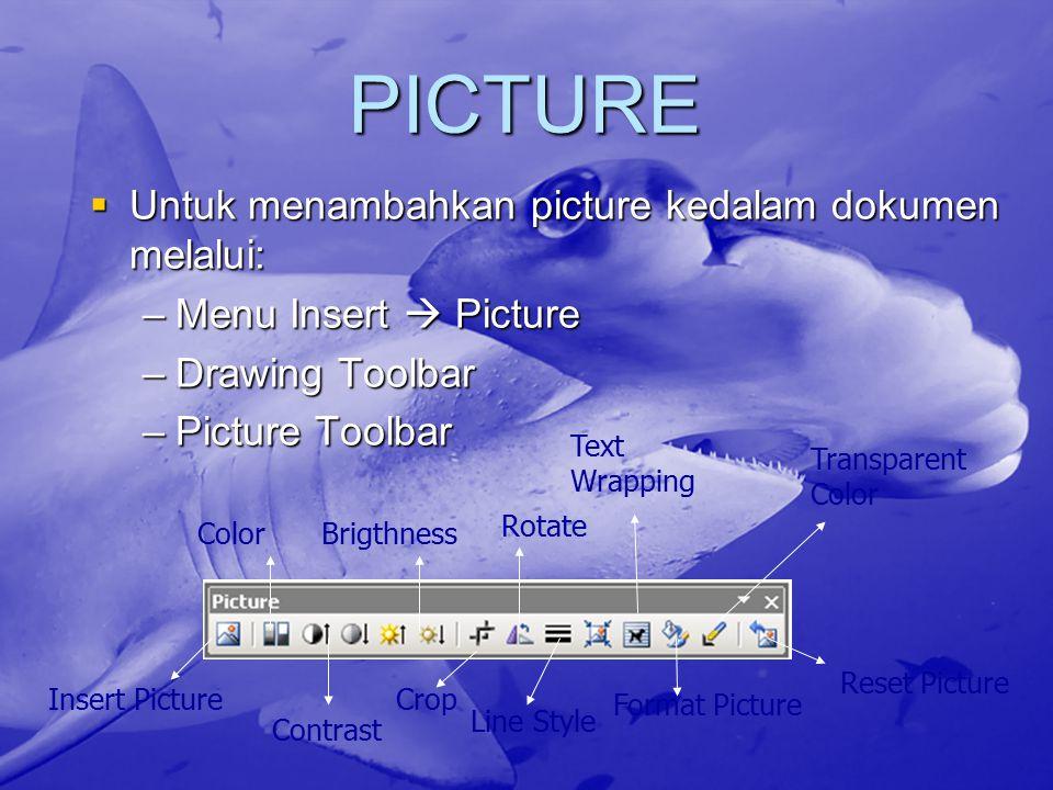 PICTURE  Untuk menambahkan picture kedalam dokumen melalui: –Menu Insert  Picture –Drawing Toolbar –Picture Toolbar Insert Picture Color Contrast Br