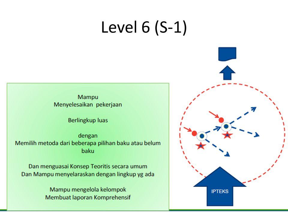 Level 6 (S-1)