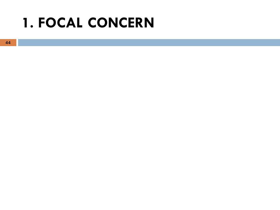 44 1. FOCAL CONCERN