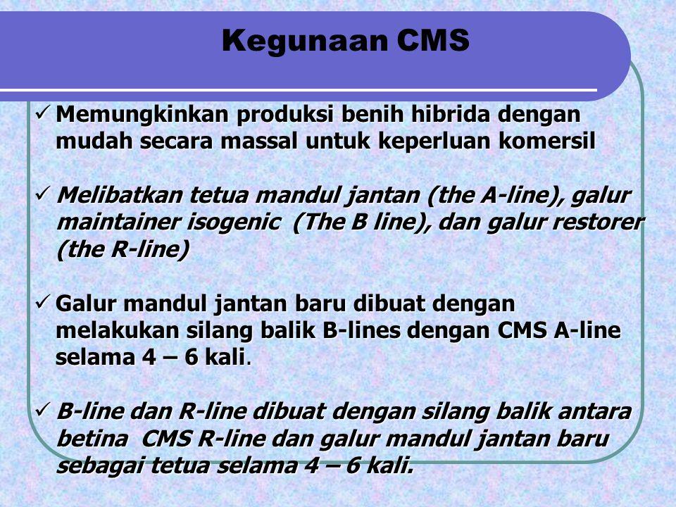 Kegunaan CMS Memungkinkan produksi benih hibrida dengan mudah secara massal untuk keperluan komersil Memungkinkan produksi benih hibrida dengan mudah