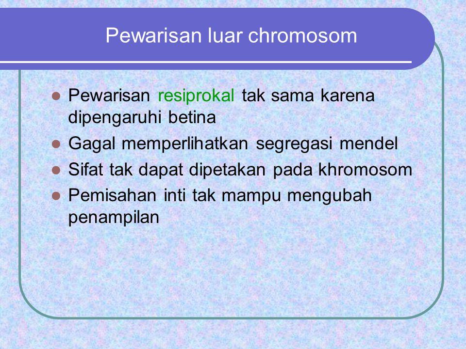 Pewarisan luar chromosom Pewarisan resiprokal tak sama karena dipengaruhi betina Gagal memperlihatkan segregasi mendel Sifat tak dapat dipetakan pada