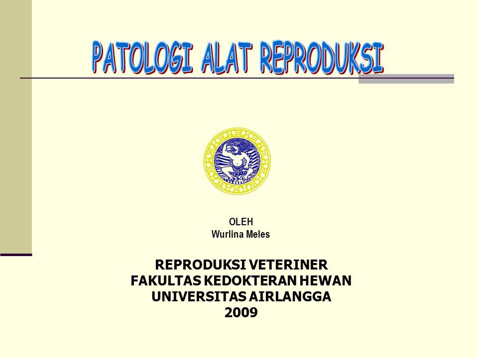 OLEH Wurlina Meles REPRODUKSI VETERINER FAKULTAS KEDOKTERAN HEWAN UNIVERSITAS AIRLANGGA 2009