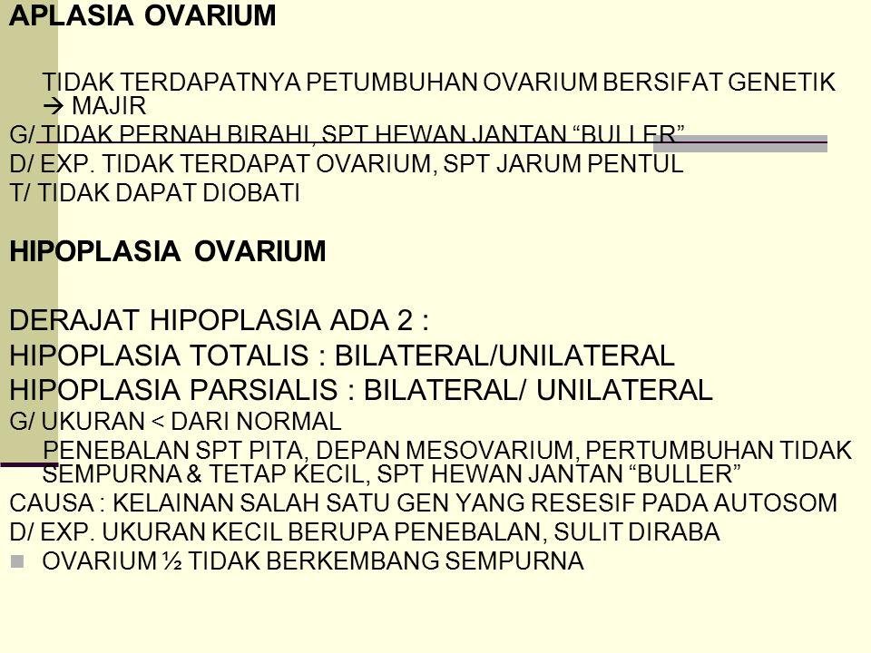 """APLASIA OVARIUM TIDAK TERDAPATNYA PETUMBUHAN OVARIUM BERSIFAT GENETIK  MAJIR G/ TIDAK PERNAH BIRAHI, SPT HEWAN JANTAN """"BULLER"""" D/ EXP. TIDAK TERDAPAT"""