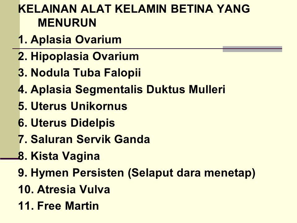 KELAINAN ALAT KELAMIN BETINA YANG MENURUN 1. Aplasia Ovarium 2. Hipoplasia Ovarium 3. Nodula Tuba Falopii 4. Aplasia Segmentalis Duktus Mulleri 5. Ute