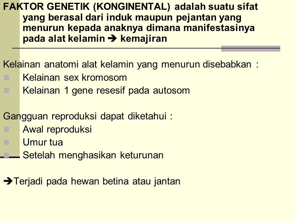 HYPOPLASIA SEGMENTALIS