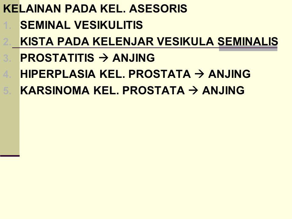 KELAINAN PADA KEL. ASESORIS 1. SEMINAL VESIKULITIS 2. KISTA PADA KELENJAR VESIKULA SEMINALIS 3. PROSTATITIS  ANJING 4. HIPERPLASIA KEL. PROSTATA  AN