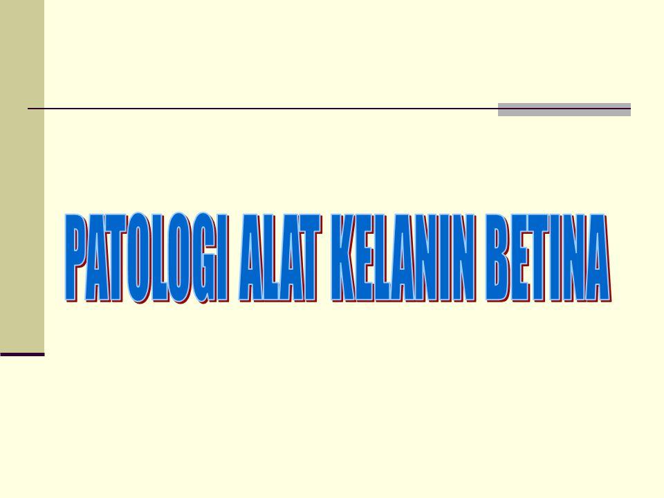 PATOLOGI ALAT REPRODUKSI  KEMAJIRAN TERNAK PENYEBABNYA ADALAH : 1.