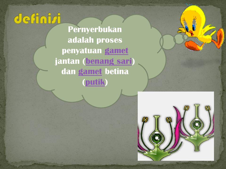 Pernyerbukan adalah proses penyatuan gamet jantan (benang sari) dan gamet betina (putik)gametbenang sarigametputik