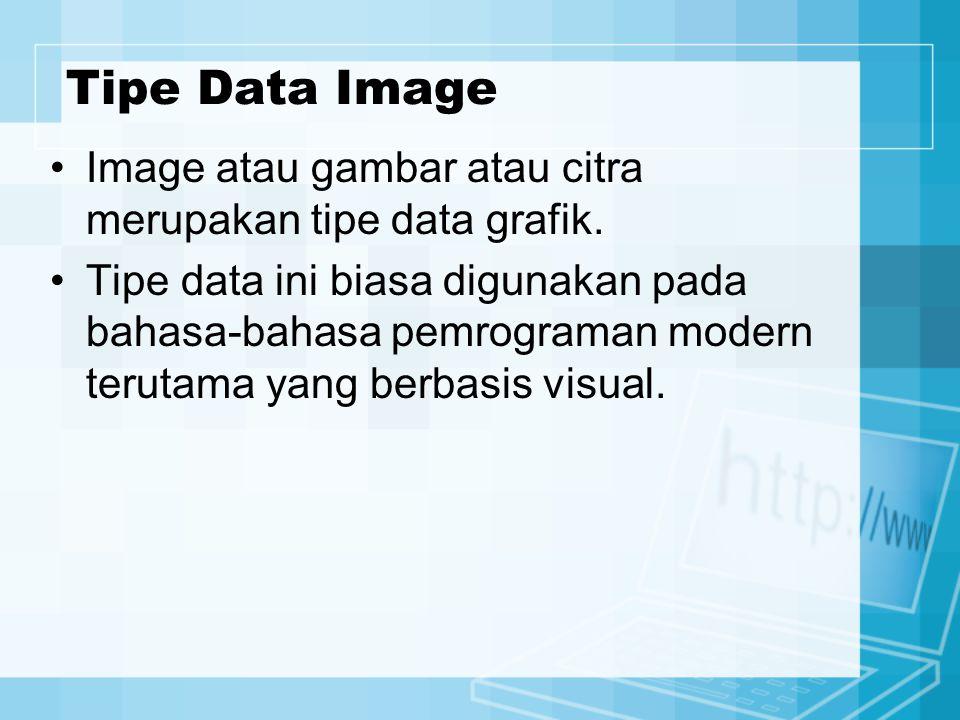 Tipe Data Image Image atau gambar atau citra merupakan tipe data grafik. Tipe data ini biasa digunakan pada bahasa-bahasa pemrograman modern terutama