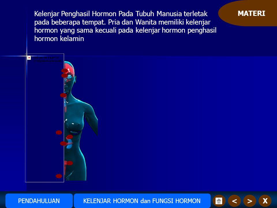MATERI X>< Kelenjar Penghasil Hormon Pada Tubuh Manusia terletak pada beberapa tempat.