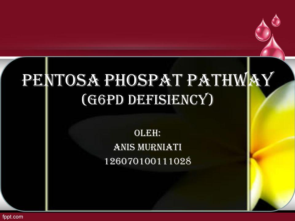 PENTOSA PHOSPAT PATHWAY (G6PD DEFISIENCY) OLEH: ANIS MURNIATI 126070100111028