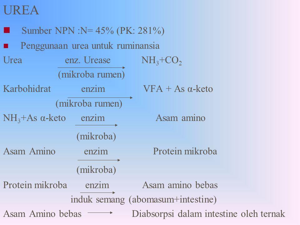 Bahan yang Digunakan 1.Urea 2. Molasses 3. Mineral 4.