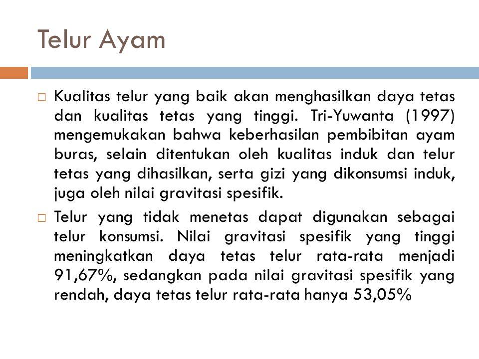 Telur Ayam  Kualitas telur yang baik akan menghasilkan daya tetas dan kualitas tetas yang tinggi. Tri-Yuwanta (1997) mengemukakan bahwa keberhasilan
