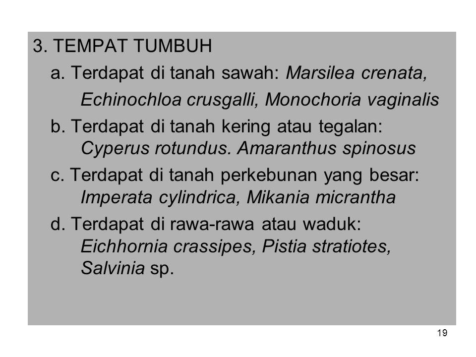 3.TEMPAT TUMBUH a.