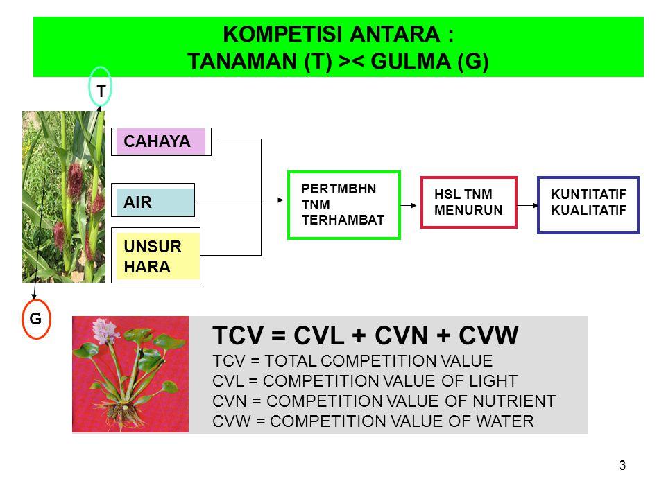 KOMPETISI ANTARA : TANAMAN (T) >< GULMA (G) CAHAYA AIR UNSUR HARA PERTMBHN TNM TERHAMBAT HSL TNM MENURUN KUNTITATIF KUALITATIF TCV = CVL + CVN + CVW TCV = TOTAL COMPETITION VALUE CVL = COMPETITION VALUE OF LIGHT CVN = COMPETITION VALUE OF NUTRIENT CVW = COMPETITION VALUE OF WATER T G 3