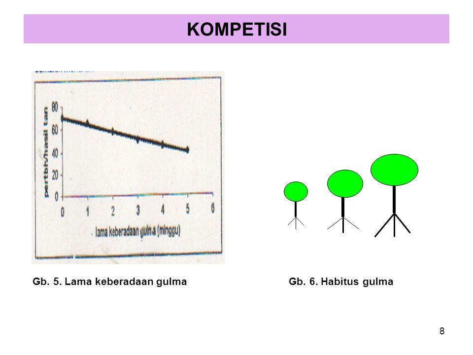 Gb. 5. Lama keberadaan gulmaGb. 6. Habitus gulma KOMPETISI 8