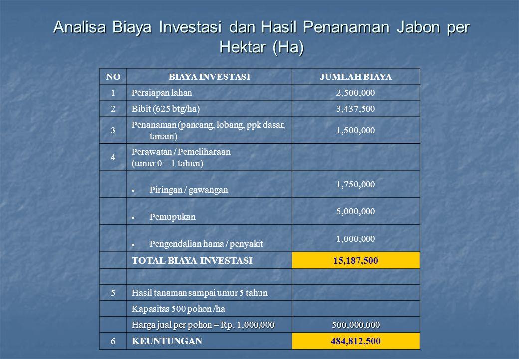 Analisa Biaya Investasi dan Hasil Penanaman Jabon per Hektar (Ha) NOBIAYA INVESTASIJUMLAH BIAYA 1Persiapan lahan2,500,000 2Bibit (625 btg/ha)3,437,500