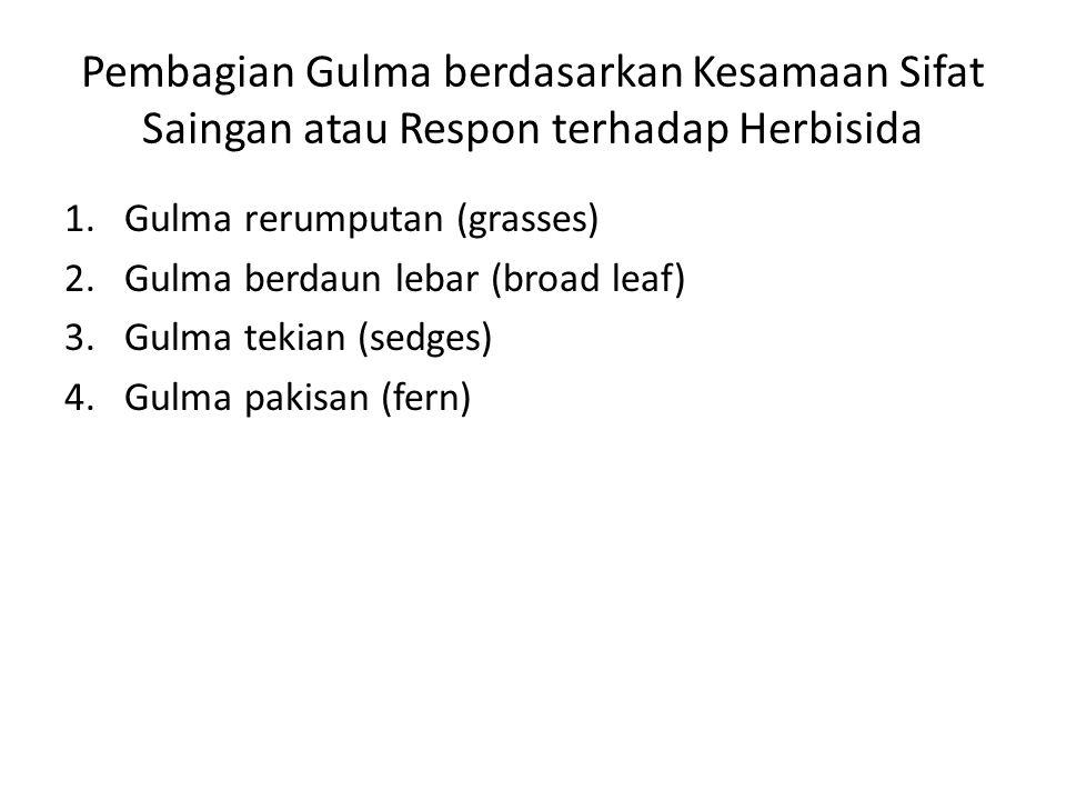 Pembagian Gulma berdasarkan Kesamaan Sifat Saingan atau Respon terhadap Herbisida 1.Gulma rerumputan (grasses) 2.Gulma berdaun lebar (broad leaf) 3.Gulma tekian (sedges) 4.Gulma pakisan (fern)