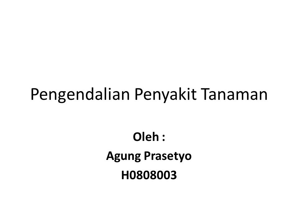 Pengendalian Penyakit Tanaman Oleh : Agung Prasetyo H0808003