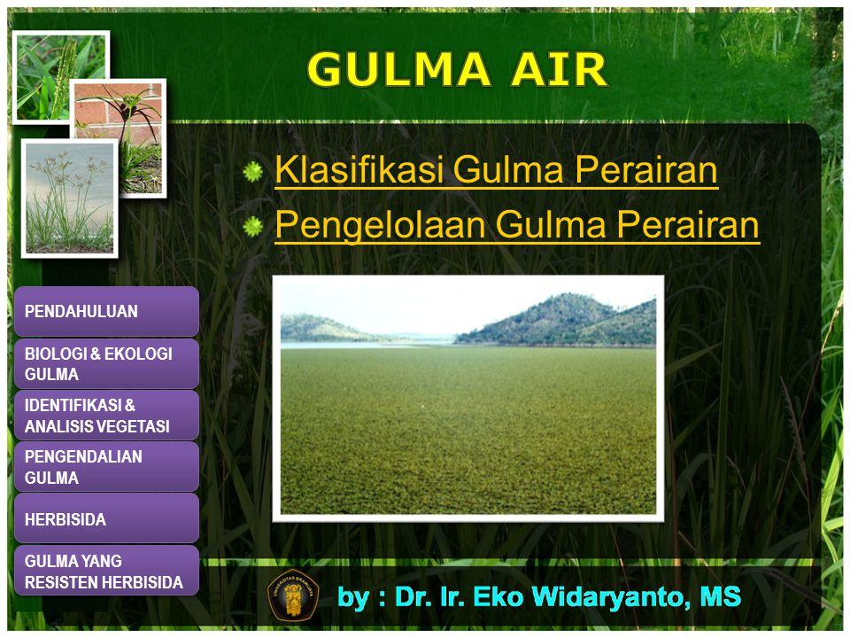 Klasifikasi Gulma Perairan Pengelolaan Gulma Perairan PENDAHULUAN BIOLOGI & EKOLOGI GULMA BIOLOGI & EKOLOGI GULMA IDENTIFIKASI & ANALISIS VEGETASI IDENTIFIKASI & ANALISIS VEGETASI PENGENDALIAN GULMA PENGENDALIAN GULMA HERBISIDA GULMA YANG RESISTEN HERBISIDA GULMA YANG RESISTEN HERBISIDA