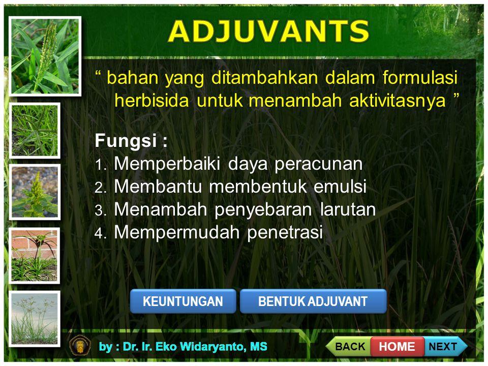 """"""" bahan yang ditambahkan dalam formulasi herbisida untuk menambah aktivitasnya """" Fungsi : 1. Memperbaiki daya peracunan 2. Membantu membentuk emulsi 3"""