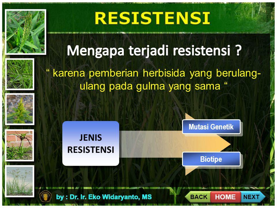 """4 """" karena pemberian herbisida yang berulang- ulang pada gulma yang sama """" Mutasi Genetik JENIS RESISTENSI Biotipe BACK NEXT HOME"""