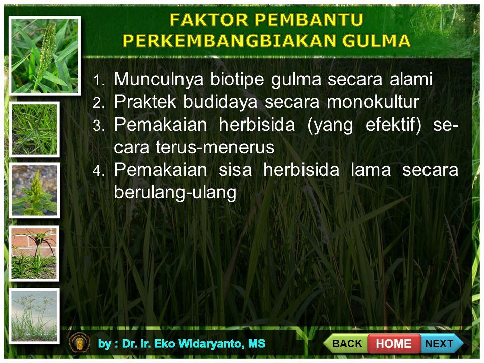 4 1. Munculnya biotipe gulma secara alami 2. Praktek budidaya secara monokultur 3. Pemakaian herbisida (yang efektif) se- cara terus-menerus 4. Pemaka