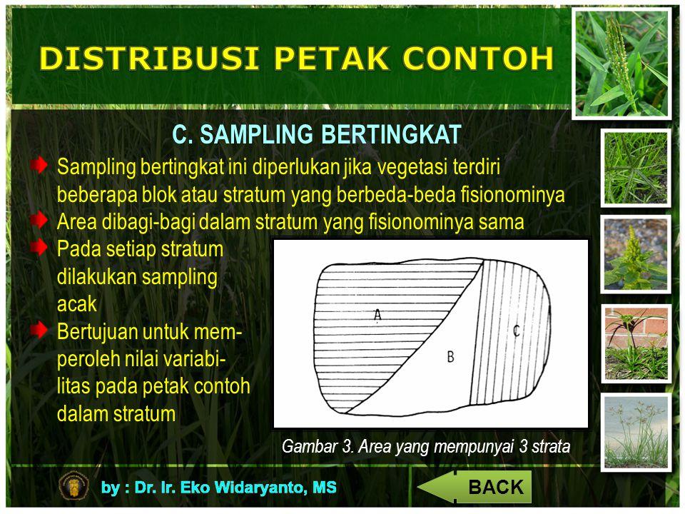 C. SAMPLING BERTINGKAT Sampling bertingkat ini diperlukan jika vegetasi terdiri beberapa blok atau stratum yang berbeda-beda fisionominya Area dibagi-