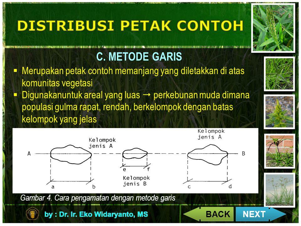 C. METODE GARIS  Merupakan petak contoh memanjang yang diletakkan di atas komunitas vegetasi  Digunakanuntuk areal yang luas  perkebunan muda diman