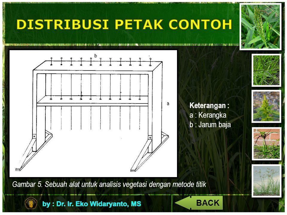 Gambar 5. Sebuah alat untuk analisis vegetasi dengan metode titik Keterangan : a : Kerangka b : Jarum baja BACK
