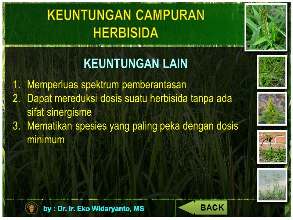 KEUNTUNGAN LAIN 1.Memperluas spektrum pemberantasan 2.Dapat mereduksi dosis suatu herbisida tanpa ada sifat sinergisme 3.Mematikan spesies yang paling