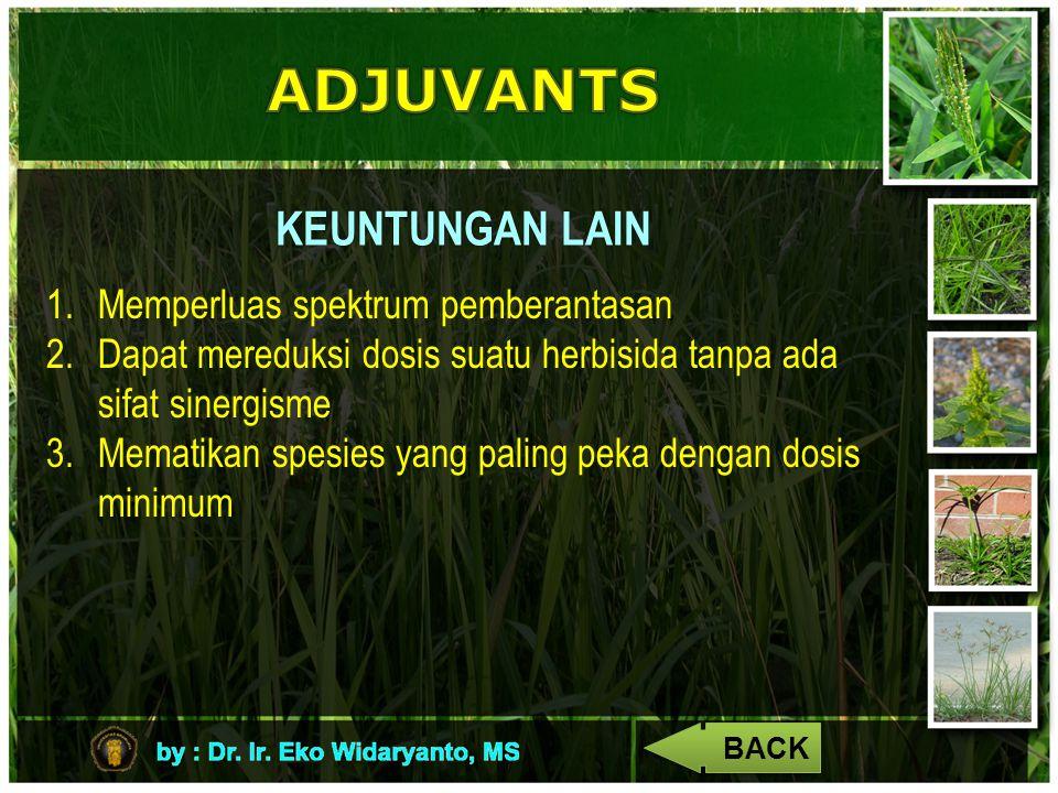 KEUNTUNGAN LAIN 1.Memperluas spektrum pemberantasan 2.Dapat mereduksi dosis suatu herbisida tanpa ada sifat sinergisme 3.Mematikan spesies yang paling peka dengan dosis minimum BACK